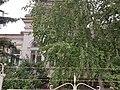 Casa Curețeanu, Odobești 02.jpg
