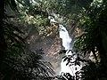 Cascada entre la selva - panoramio.jpg