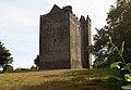 Castles of Munster, Redwood, Tipperary (1) - geograph.org.uk - 2495204.jpg