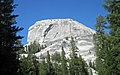 Cathedral Peak Granodiorite (Late Cretaceous, 86-88 Ma; Daff Dome, Yosemite National Park, California, USA) 1.jpg