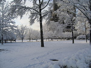 Winter - A snow-covered park in Pittsburgh, Pennsylvania, during winter