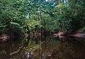 Cedar Creek (905a6998-7fc1-4e5b-b28c-56b1a3dadf6c).jpg