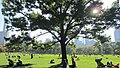 Central Park, New York, NY, USA - panoramio (120).jpg