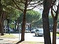 Centre-ville de la Palmyre - panoramio.jpg