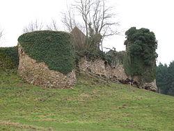 Château de Dyo - Les tours rondes