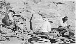 Photo of two men and a woman digging among rocks.