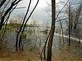 Cherkas'kyi district, Cherkas'ka oblast, Ukraine - panoramio (95).jpg