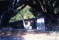 Chinese Tomb 2.jpg