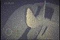 Choctaw propeller.jpg