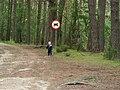 Chojnice, Poland - panoramio (22).jpg