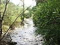 Chuprenska River - 2015 - 1.JPG