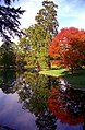 "Cincinnati - Spring Grove Cemetery & Arboretum ""Autumn Reflection on Geyser Lake"" (4024129267).jpg"