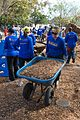 Coalition Builds New Playground in One Day for Chicora-Cherokee Community (11054601593).jpg