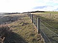 Coastal fence - geograph.org.uk - 1187939.jpg