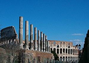 English: Temple of Venus (Rome) in the Forum R...