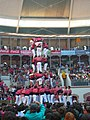 Concurs de Castells 2008 P1220455.JPG