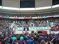 Concurs de Castells 2010 P1310272.JPG