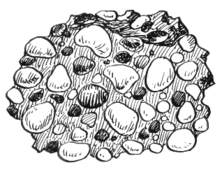 Conglomerate (PSF).png