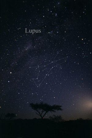 Lupus (constellation) - The constellation Lupus as it can be seen by the naked eye.