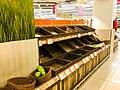 Coronavirus Panic shopping, Ntuc super store, Singapore.jpg