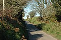 Country Lane near Carloggas - geograph.org.uk - 432519.jpg