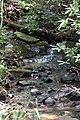 Creek at hm 2 (3742840437).jpg