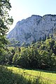 Creux du Van - panoramio (93).jpg