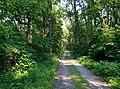 Cruger road - panoramio.jpg