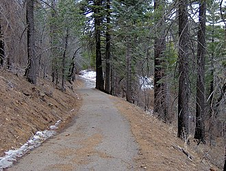 Cuyamaca Peak - Image: Cuyamaca Peak roadway below the peak