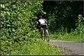 Cycling, Kopasz Hill, Tokaj, Hungary - panoramio (73).jpg