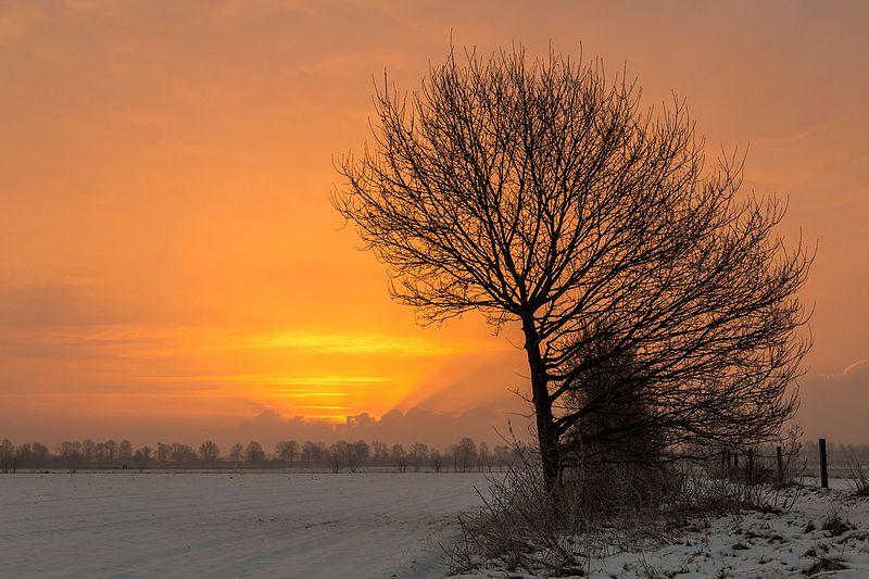 File:Dülmen, Hausdülmen, Sonnenaufgang -- 2015 -- 4952.jpg