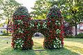 Dülmen, Lüdinghauser Tor als Blumenskulptur -- 2015 -- 6556.jpg