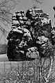 D-NW-LIP-Horn-Bad Meinberg - Externsteine 1970-003.jpg
