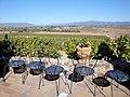 DSC24927, Viansa Vineyards & Winery, Sonoma Valley, California, USA (8165591032).jpg