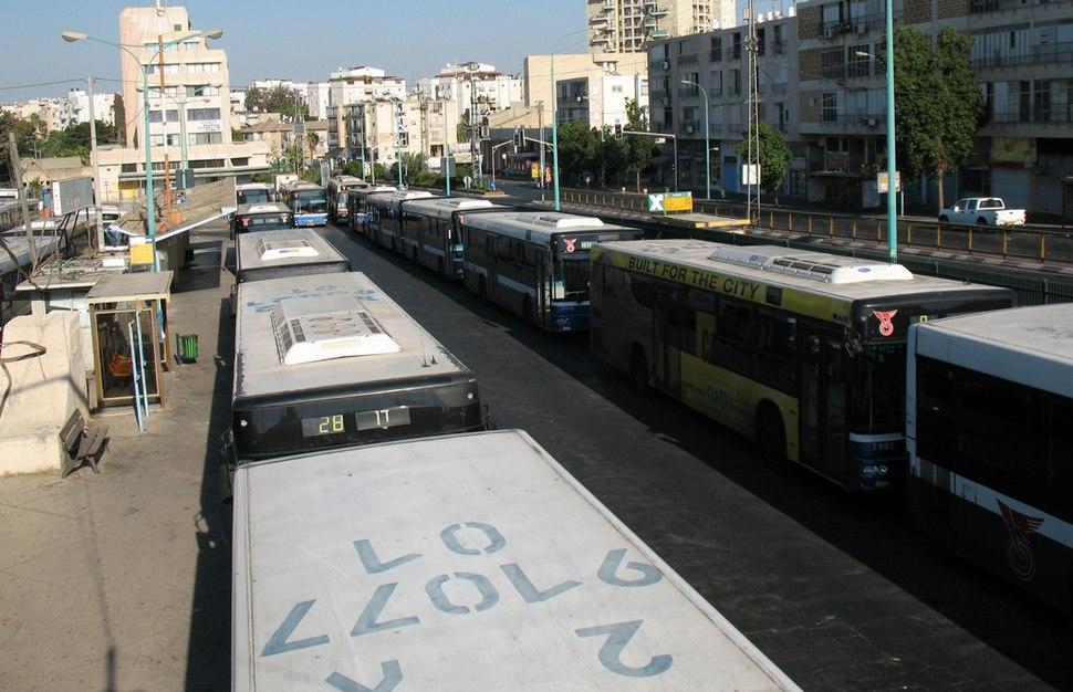 Dan Buses03