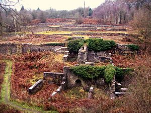David Mushet - Remains of Darkhill Ironworks.