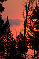 Dawn Lake Yellowstone (8043676830).jpg