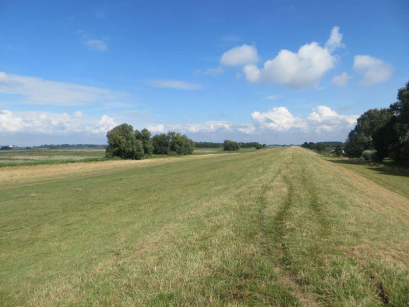 Hohenhorst