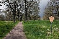 Dessau-Roßlau, Vorderen Tiergarten.JPG