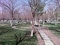 Dicle Üniversitesi Kampus bahçesi.jpg
