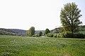 Die K50 am Katzbach Richtung Siebenstern - im Hintergrund das Bauernhof Rothehaus.JPG