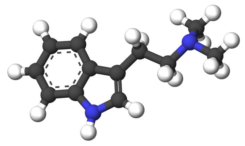 File:Dimethyltryptamine-3d-sticks.png