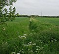 Ditch between fields - geograph.org.uk - 817642.jpg