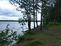 Dobryanskiy r-n, Permskiy kray, Russia - panoramio (270).jpg