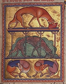 The Dog and Its Reflection - Wikipedia
