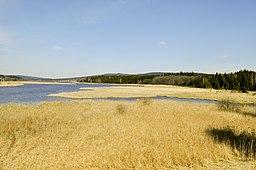 Dolejší Padrťský rybník2