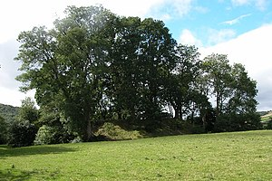 Dorstone - Image: Dorstone Castle geograph.org.uk 45963
