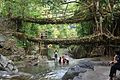 Double decker living root bridge 02.jpg