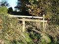 Double stile into tree break, near Chettle - geograph.org.uk - 280604.jpg