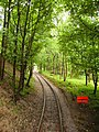 Down the Tram Track at Crich - geograph.org.uk - 922264.jpg